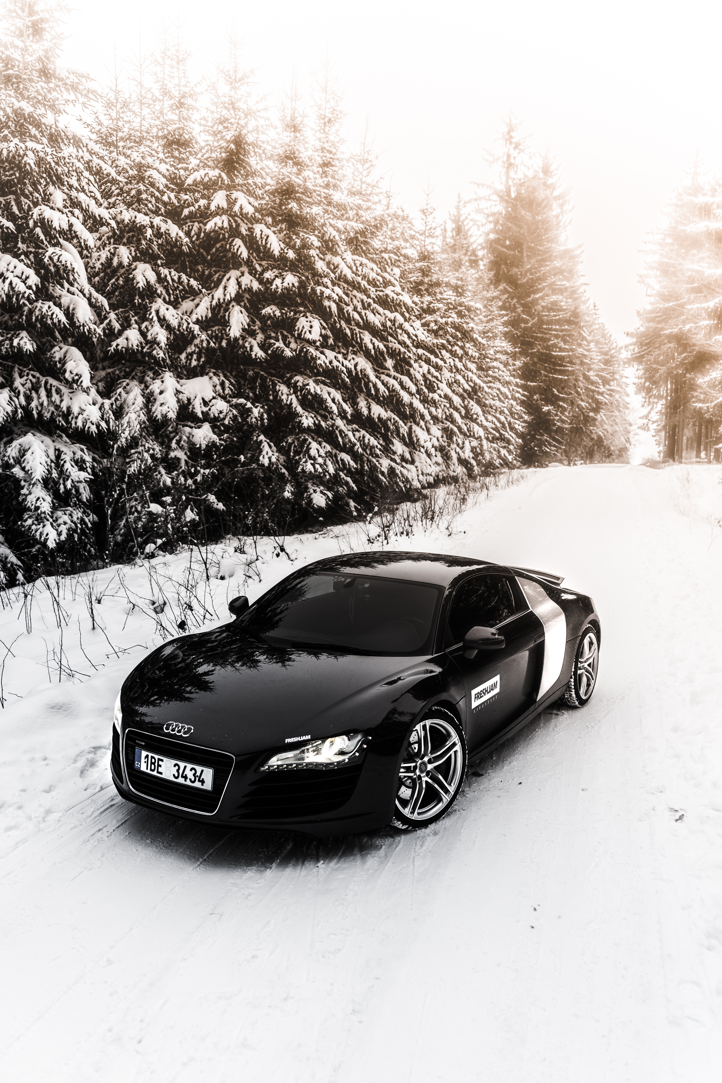 R8 Winter Forest Front Side