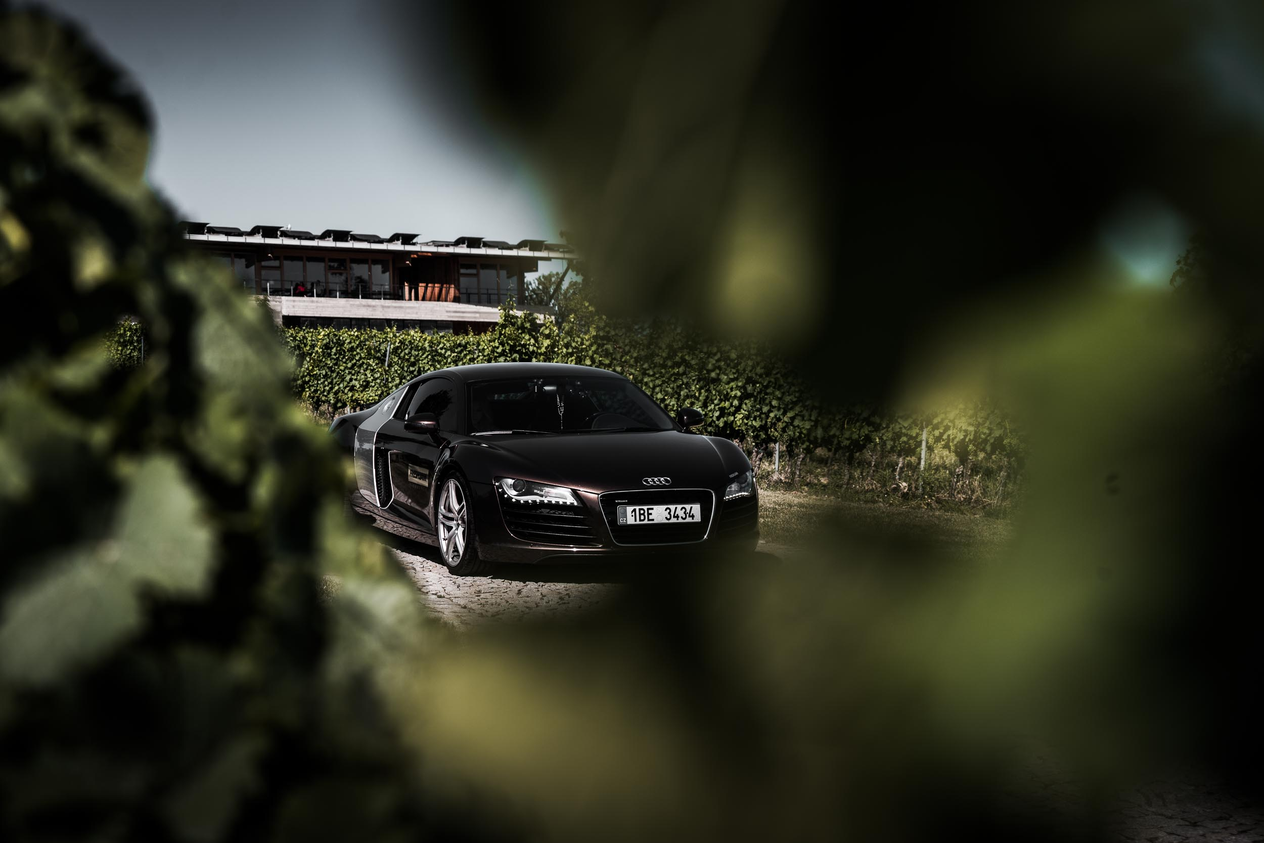 Audi R8 Wallpaper Vineyard